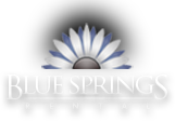 Blue Springs Rental, Blue Springs, Missouri